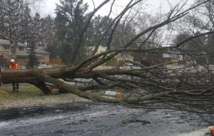 5-storm-damage-care-service-oakville