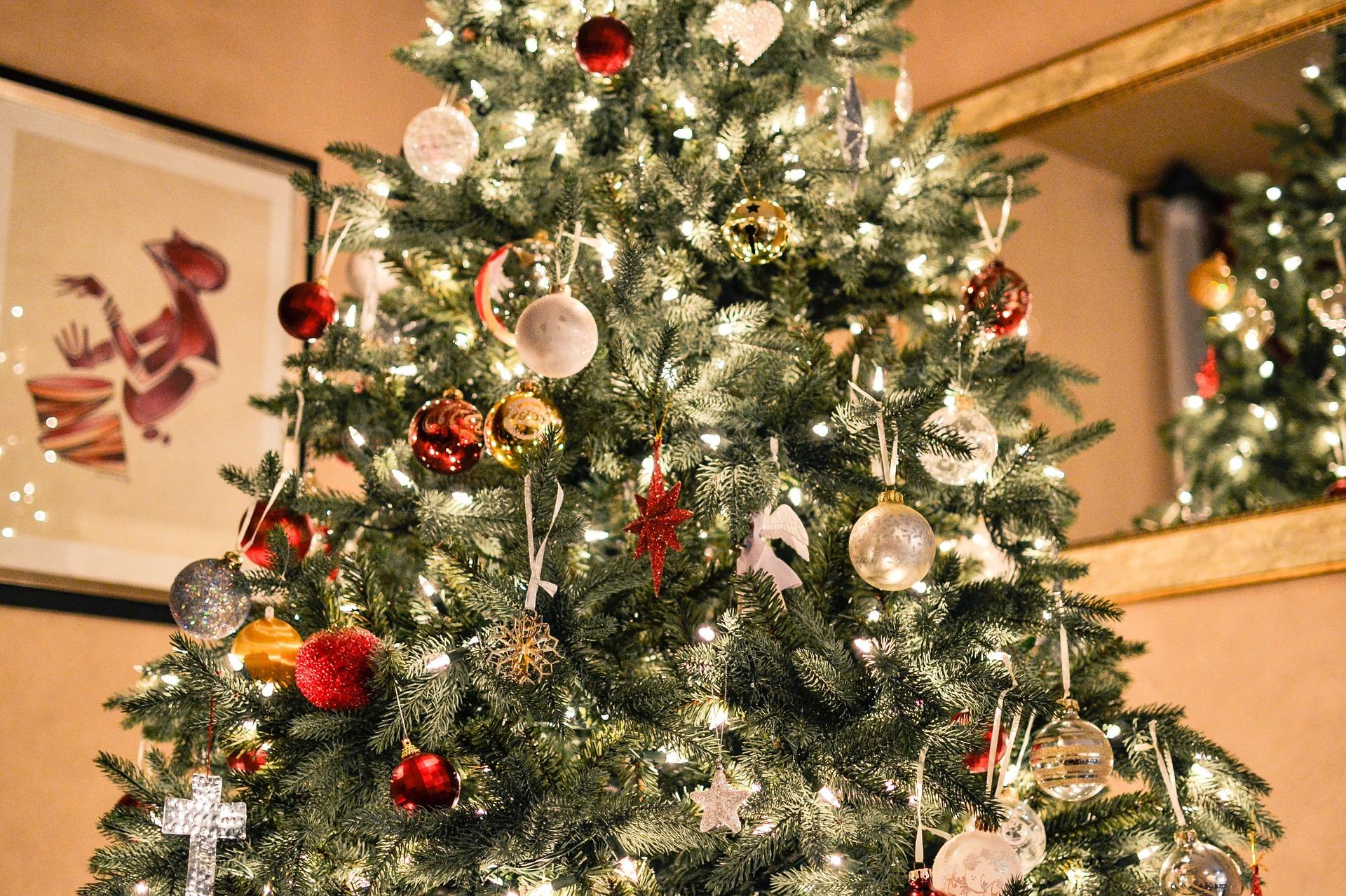 Christmas Tree Set-up