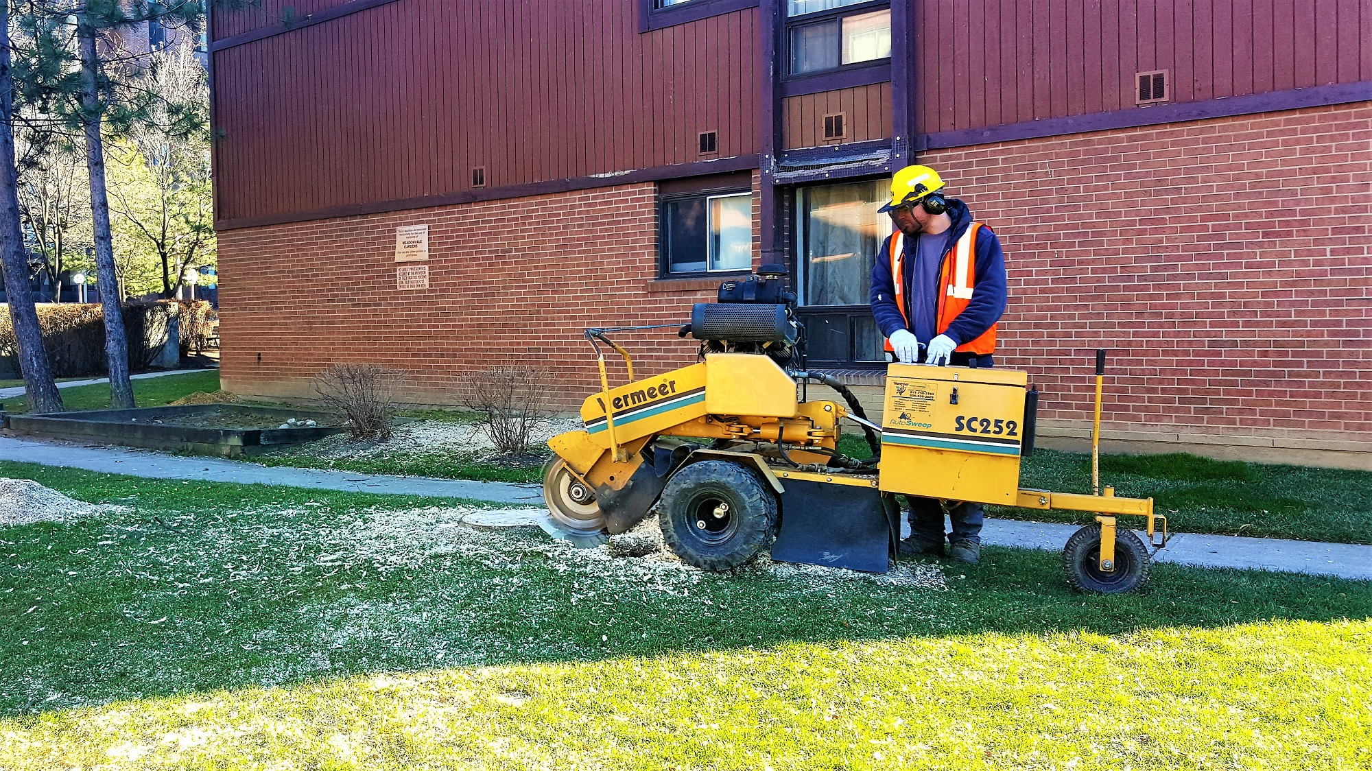 Stump Removal Mississauga