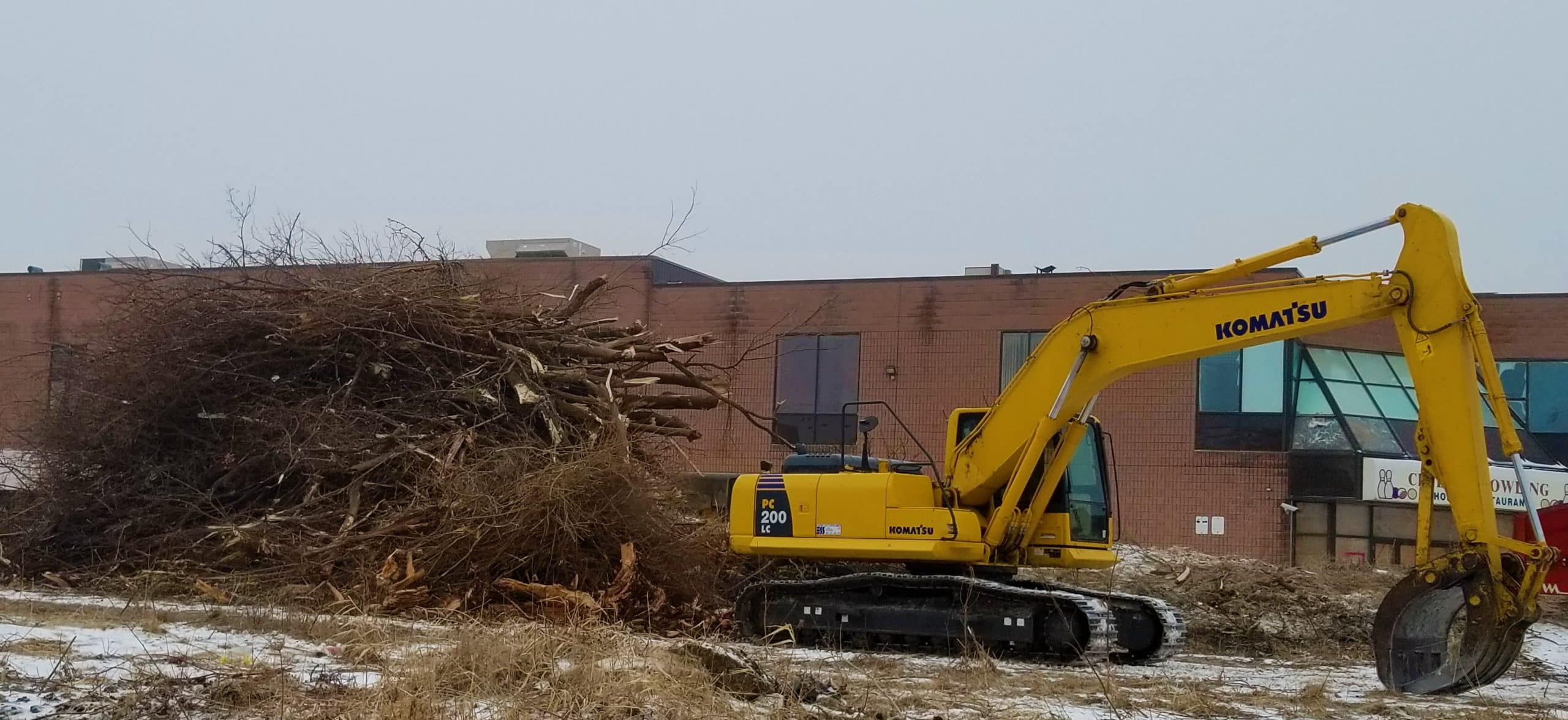 land clearing tree service
