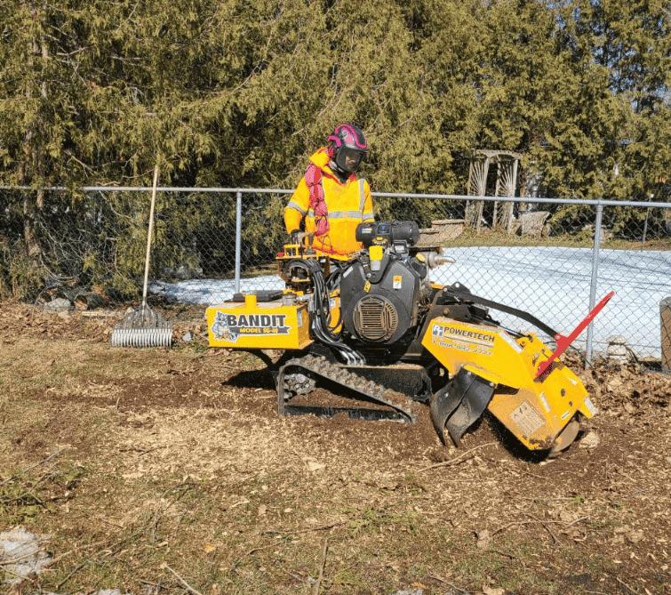 Burlington Stump Removal